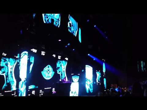 Where is my mind? Bassnectar  Red Rocks 2015