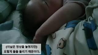 신생아 브이로그 D+51 ❤ 어른표정/아기띠/양머리/속…