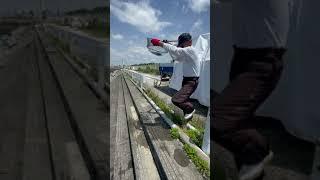 スマガツオ放流された後、スピード速すぎて秒で消える!!和歌山マリーナシティ釣堀#Shorts