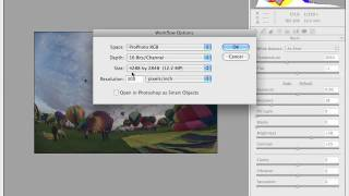 Adobe Camera Raw Adjustment Basics - Part 1