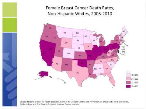 Breast Cancer Facts & Figures 2013-2014 Key Findings