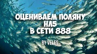 Оцениваем поляну нл5, 888 poker , LOTOS Школа покера Smart poker ru