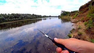 Клёв перед ГРОЗОЙ Рыбалка на реке в сентябре Судак и щука на спиннинг Джиг на реке