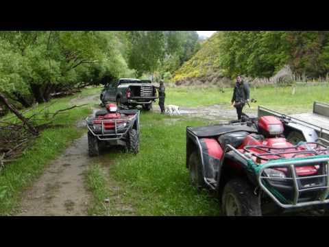 HUNTING FISHING DIVING TRIP NZ
