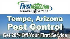 Termites - First Inspection - Pest Control Tempe