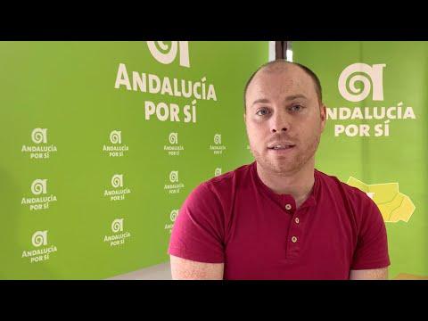 Andalucía por Sí pide ampliar las zonas peatonales de Alcalá por el COVID-19