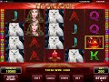 Magic Owl video slot - Review of Amatic casino game