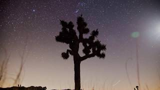 "Rita Hosking – ""California"" music video (w/ CalWild)"