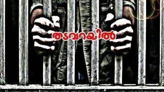 Irulil ithal viriyum arimulla poo malare | Whatsapp status romantic love malayalam song