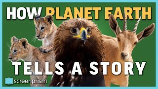 How Planet Earth Tells a Story, Part 2