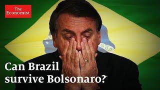 Can Brazil Survive Bolsonaro? | The Economist
