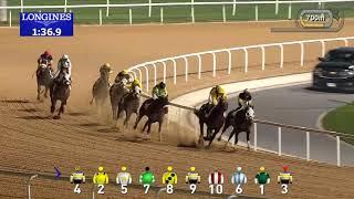 Vidéo de la course PMU CNN ARABIC