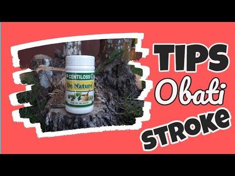 cara-mengobati-penyakit-stroke-yang-sudah-menahun