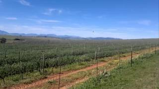 Wheat Farm For Sale South Africa