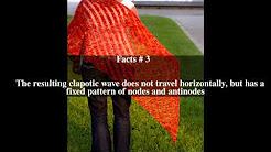 Clapotis Top # 6 Facts