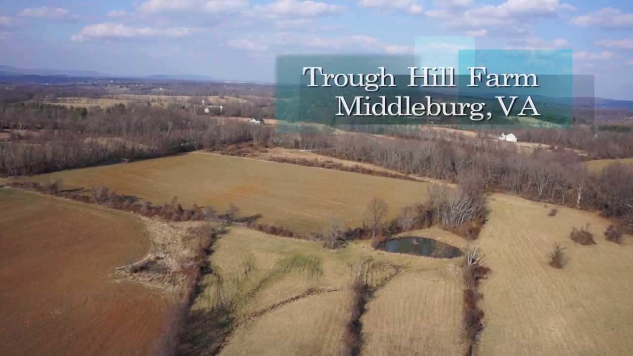 Sheridan MacMahon Real Estate Presents: Trough Hill Farm, Middleburg, VA