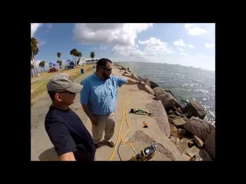 Lost Ring Sea Wolf Park Galveston, Texas (found)