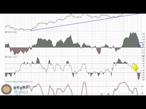 Ladenburg Thalmann Financial Services Inc. (LTS) Video Stock Chart
