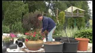 видео Садовые горшки и контейнеры (21 фото)