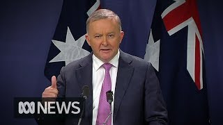 Anthony Albanese elected new Labor leader | ABC News