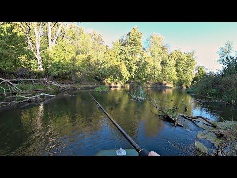 Воблер или Джиг?! Рыбалка на спиннинг на закоряженной речке.