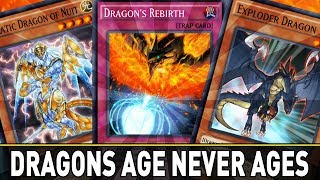 Dragon's Age Don't Age! Dragon Deck | YuGiOh Duel Links Mobile w/ ShadyPenguinn