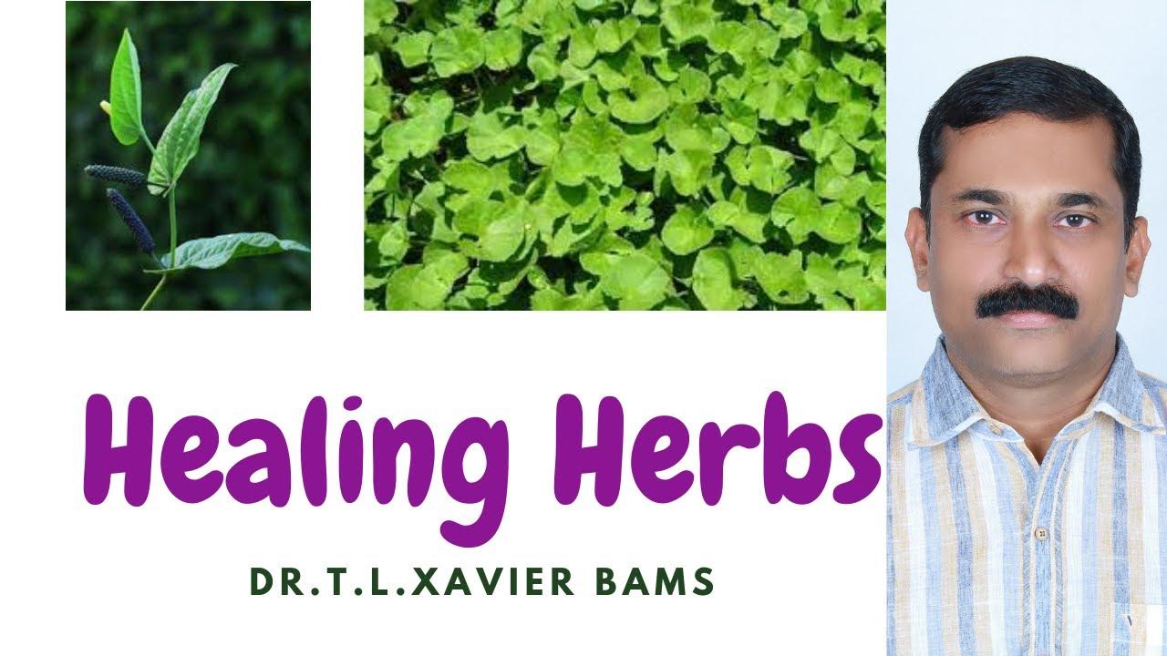 Medicinal Plants Kerala