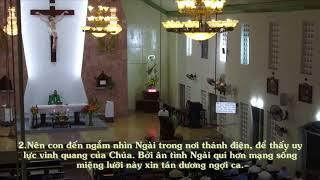 Thánh Vịnh 62 - Phan Sinh - Chúa Nhật TN22A