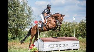 Tissot - Baborówko Horse Sale Show 2017 - auction