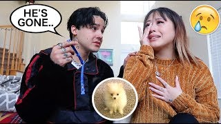 I LOST OUR DOG PRANK ON GIRLFRIEND! *Emotional*
