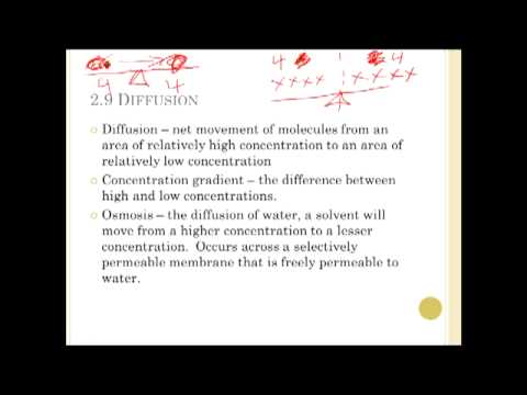 Chapter 3 Cell Structure and function Part 1