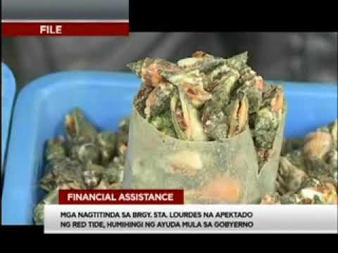 TV Patrol Palawan - Dec 12, 2017