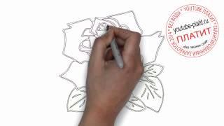 Как карандашом нарисовать розу(, 2014-06-27T06:53:25.000Z)