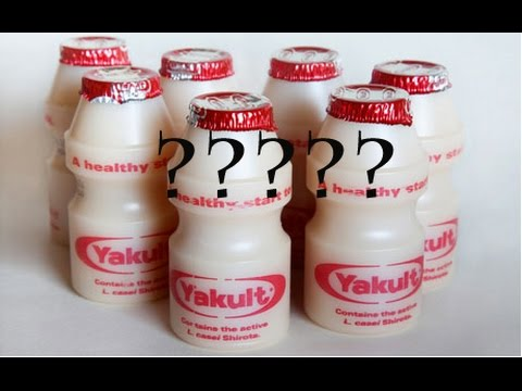 yakult probiotics Yakult is a delicious probiotic drink that is prepared by the fermentation of milk it is rich in probiotics, as it contains lactobacillus casei shirota, a rod-shaped bacterial strain during the year 1935, the japanese scientist, dr shirota, formulated this probiotic-rich drink.