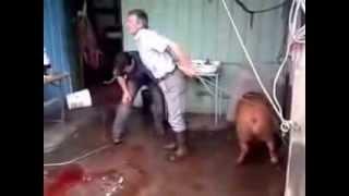 Как забить кабанчика Lucky Pig and two Dumbass