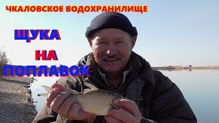 Рыбалка на Фидер Чкаловское водохранилище
