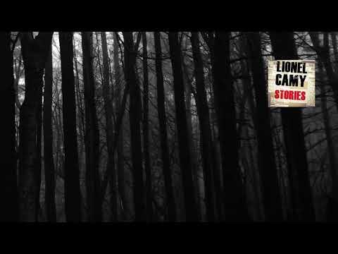 Peur en forêt aux USA (histoire VRAIE)