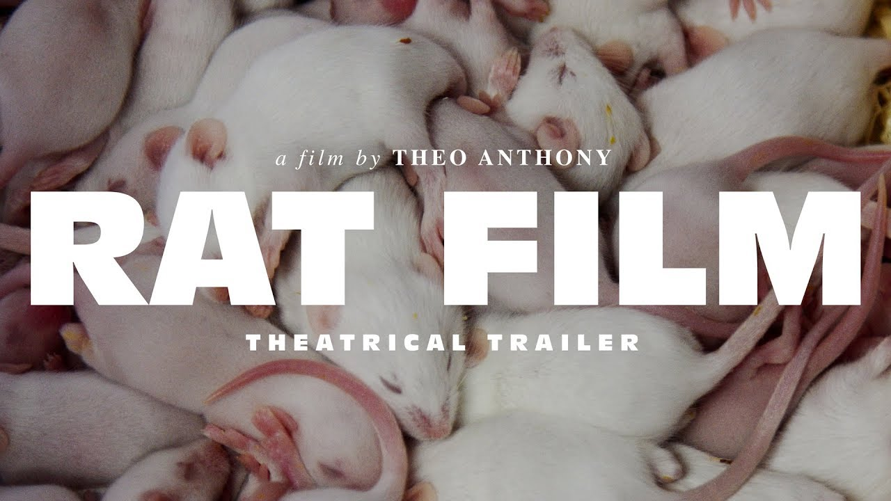 RAT FILM a film by Theo Anthony • Theatrical Trailer