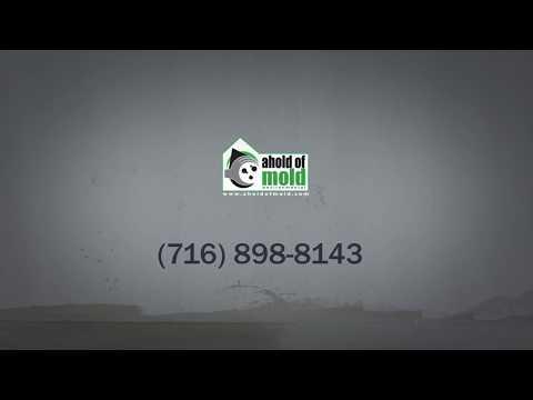 mold-remediation-&-mold-inspection-in-buffalo,-ny-|-ahold-of-mold-environmental