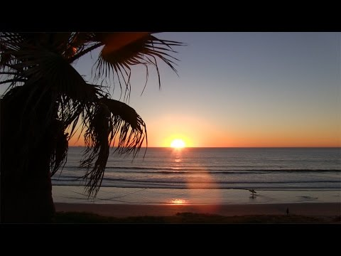 Pacific Beach California Sunset 1 hour palm tree view 4k - 12/19/2016