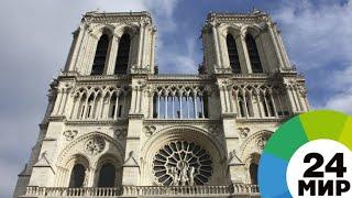 Интересные факты про собор Парижской Богоматери - МИР 24
