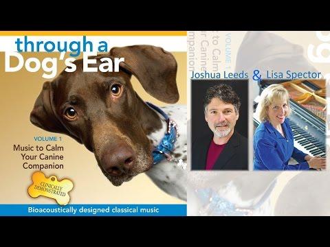 Joshua Leeds and Lisa Spector - Through A Dog's Ear Vol. 1 (90-Second Sampler)