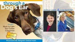 Through A Dog's Ear – Volume 1 – Music To Calm Your Canine Companion #90secondsampler