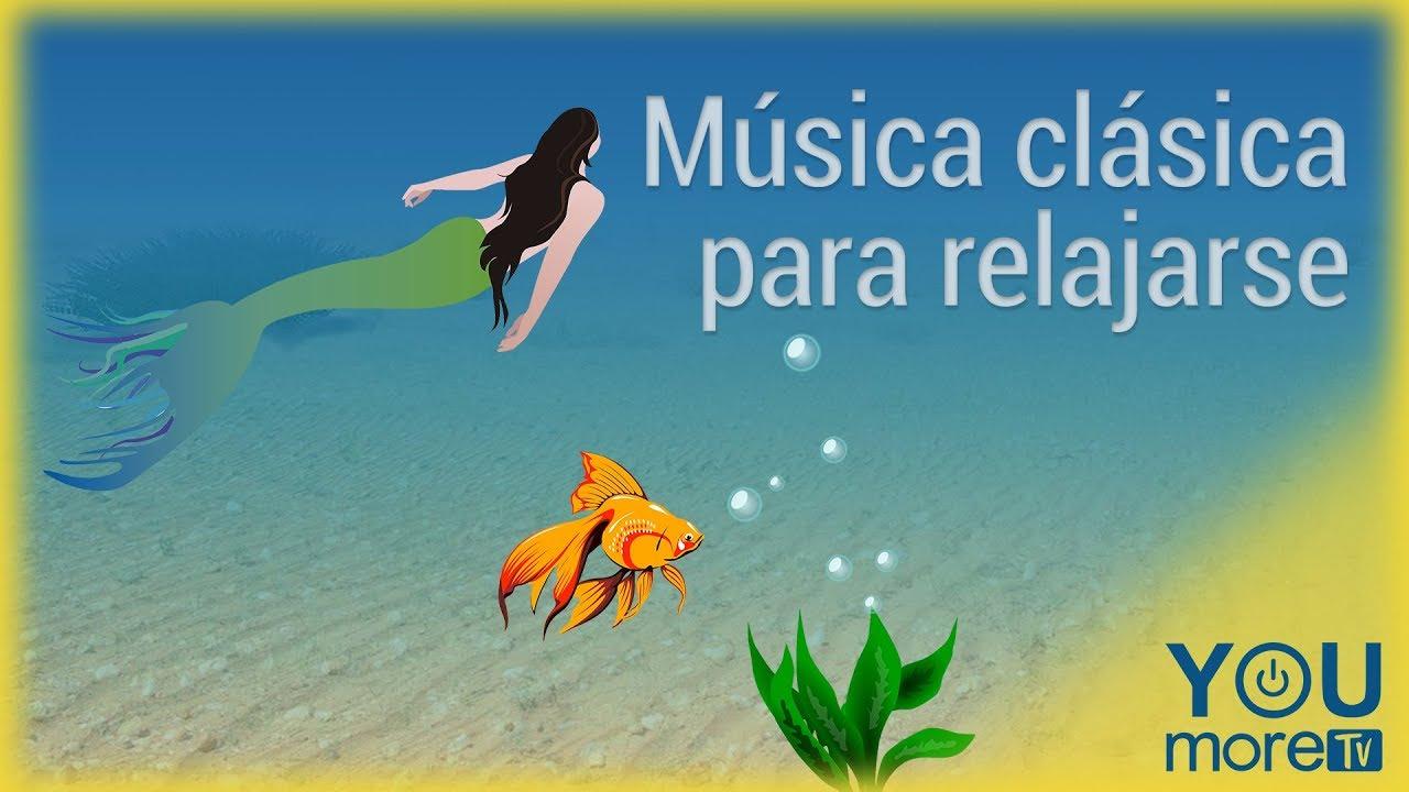 Musica Clásica Para Relajarse Youtube