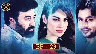 Dil Mom Ka Diya Episode 23 - Top Pakistani Drama
