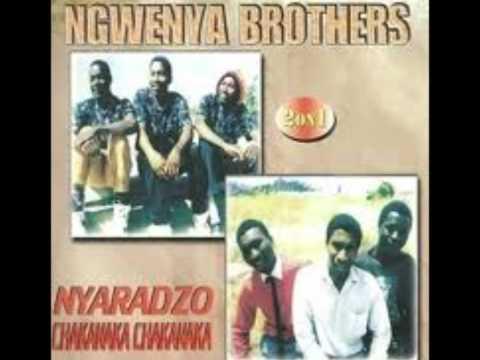 Nyaradzo - Ngwenya Brothers