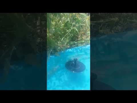 Our new Solar Powered Pool/Pond Fountain in Action