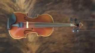 Peccard Violin