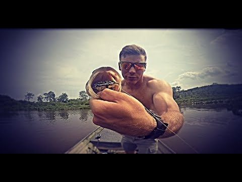 Catching Fish On Topwater Frogs (Chopawamsic Creek)