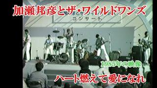 貴重映像・加瀬邦彦&ザ・ワイルドワンズ・ハート燃えて愛になれ1985年
